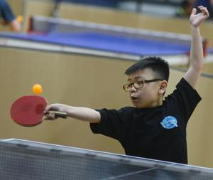 Table Tennis 9