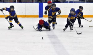 Waseca mites go after a puck 12-20