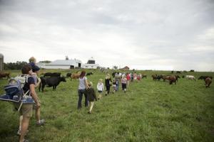 Cedar Summit Farm
