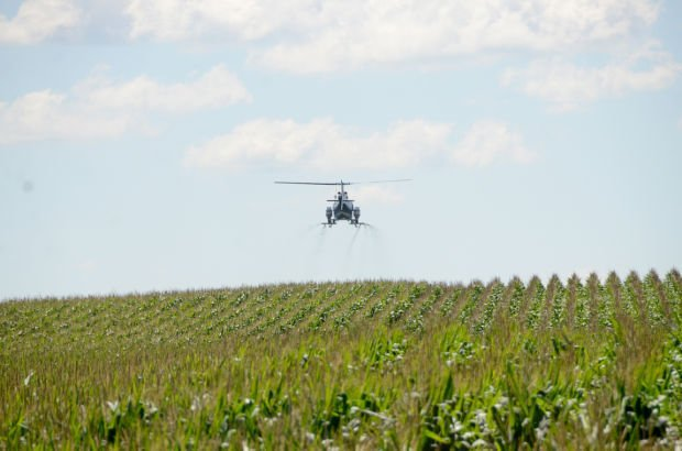 Local Farmers Eager To Learn More About Cover Crop And