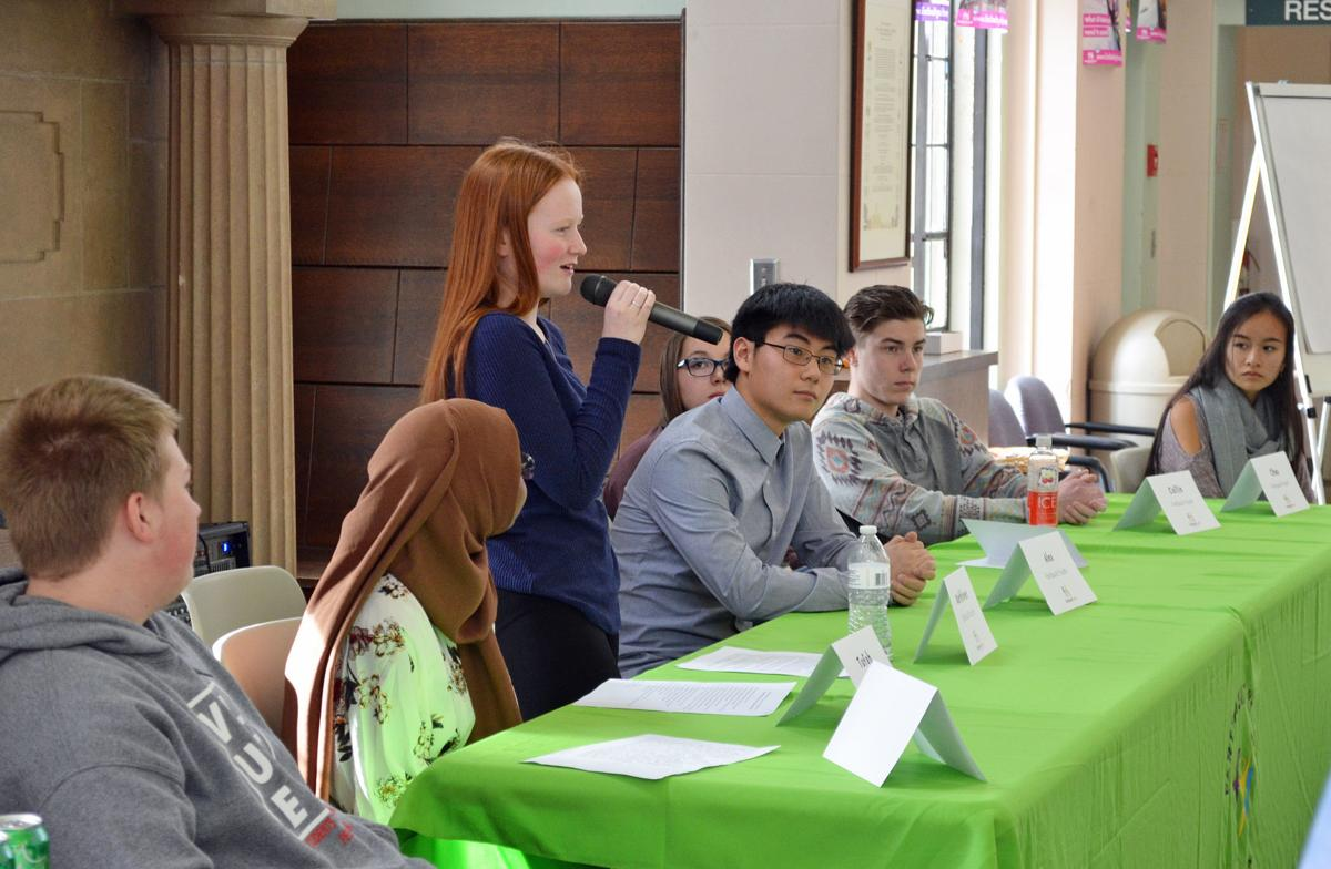 Faribault Youth Investment panel