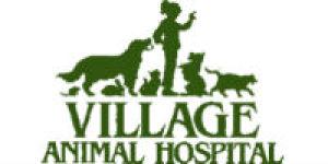 Village Animal Hospital