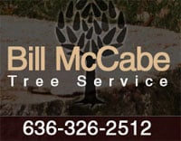 Bill McCabe Tree Service, LLC