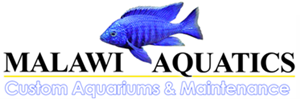 Malawi Aquatics