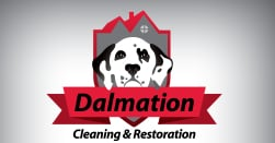 Dalmation Cleaning and Restoration