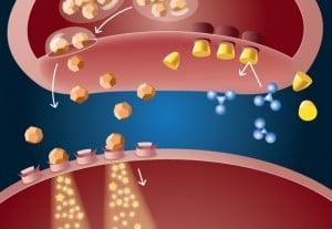 Vivitrol: How it affects the brain