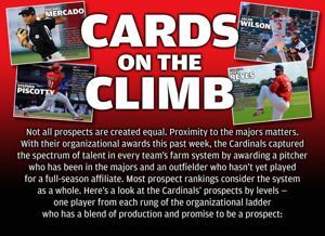 Cardinals' Minor League Prospects