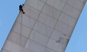 Man rappels from Gateway Arch, takes stain samples