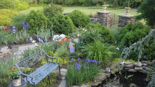 Meet our Great Garden contest winners  Lifestyles