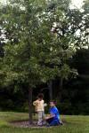 Blecha children at memorial tree for infant brother