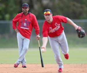Bernie: Sizing up the Cardinals' bench