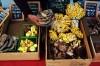 New locations, interesting vendors whet appetites for farmers market season