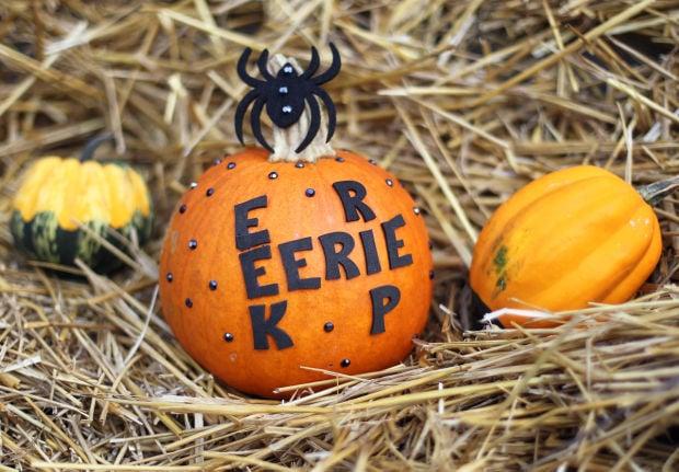 11 Ideas For No carve Pumpkins Gallery