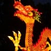 A new Lantern Festival will light up the Missouri Botanical Garden