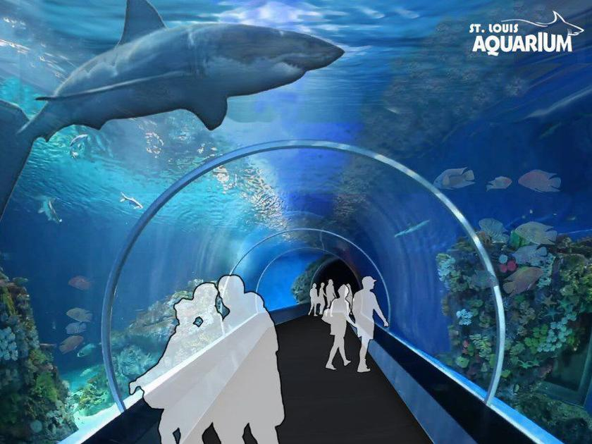 Aquarium Planned For Union Station In Downtown St Louis
