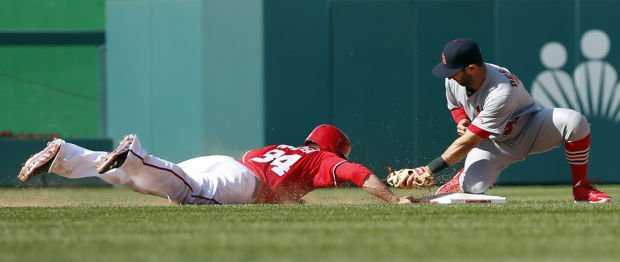 Nats rally, take a walk-off win from Cards