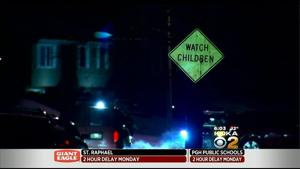 2 year old girl mauled to death by a dog in Pittsburgh