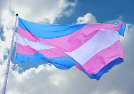 Transgender pride flag to fly over St. Louis City Hall ... Raising Ceremony