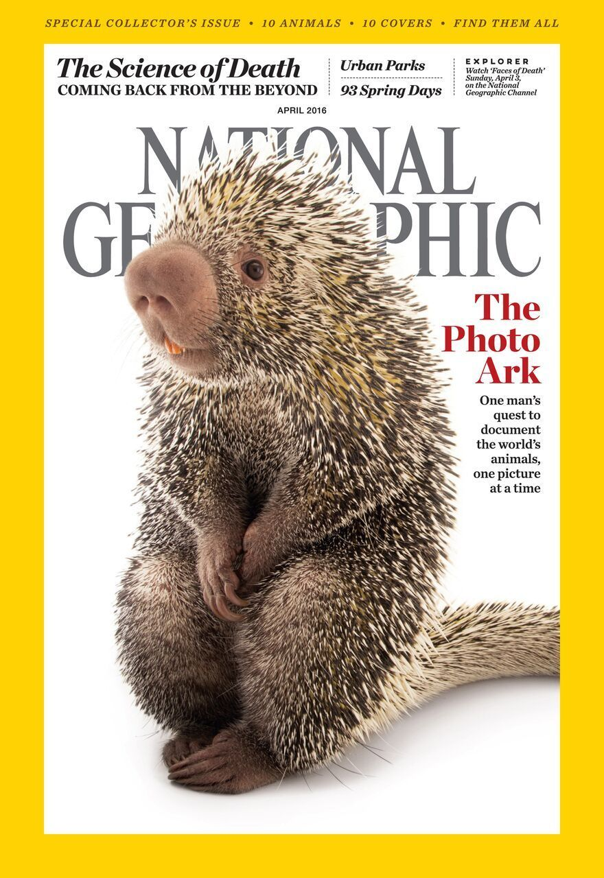 how to get featured in national geographic