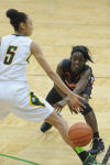 012414 024a Basketball - G RBHS v Edwardsville rh