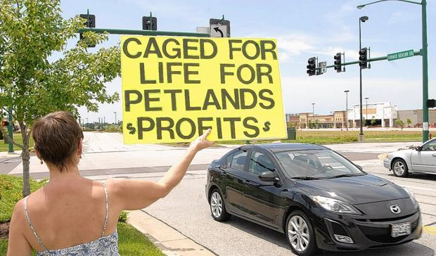 Group protests in Lake Saint Louis for pets' welfare