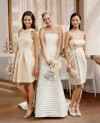 Bridal Gowns & Bridesmaids Dresses