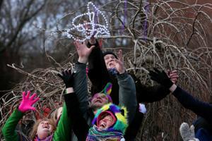 Scenes from a St. Louis Mardi Gras