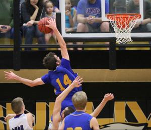 Borgia boys and girls capture district crowns