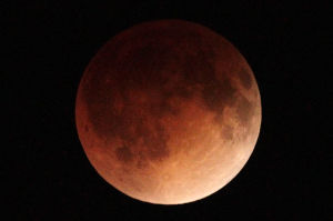 Video: Red moon eclipse over St. Louis skies