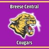 Breese Central Cougars logo