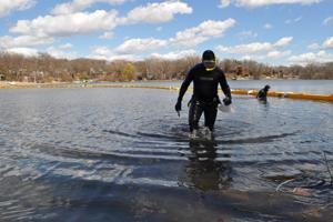 10 zebra mussels found in Christmas Lake