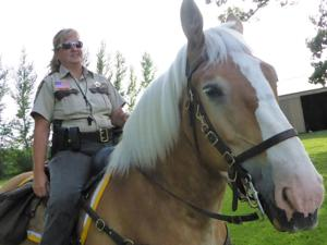 Horses play key role in county law enforcement