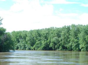 Low man river