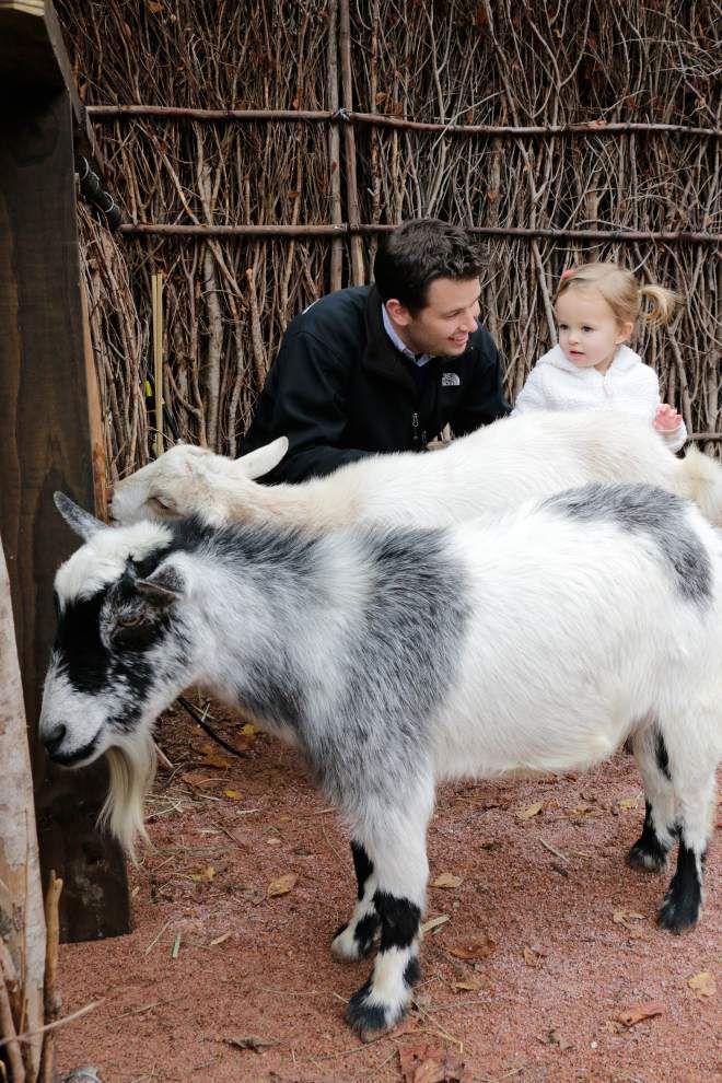 Watoto Walk opens at Audubon Zoo _lowres