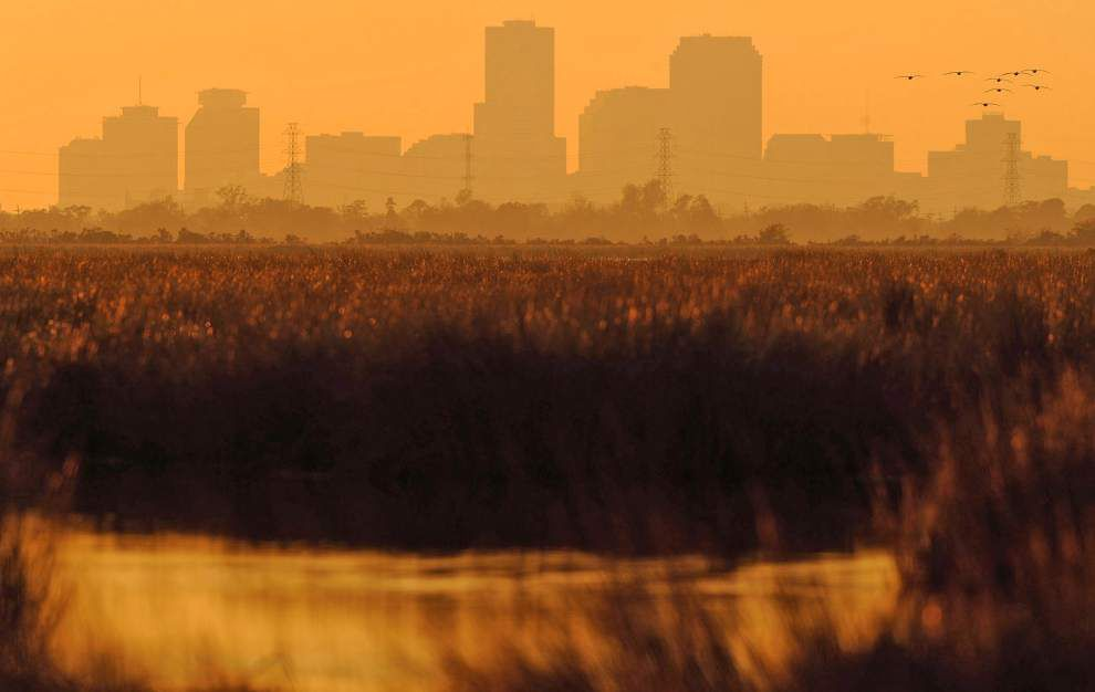 Bayou Bienvenue Wetlands Triangle _lowres