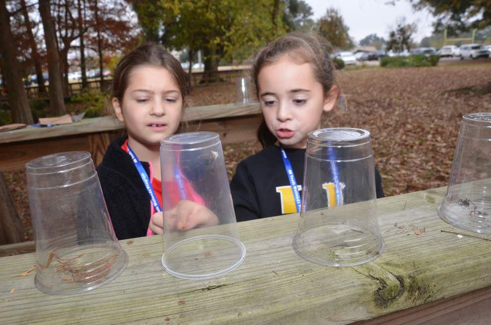 Students become wetlands 'stewards' _lowres