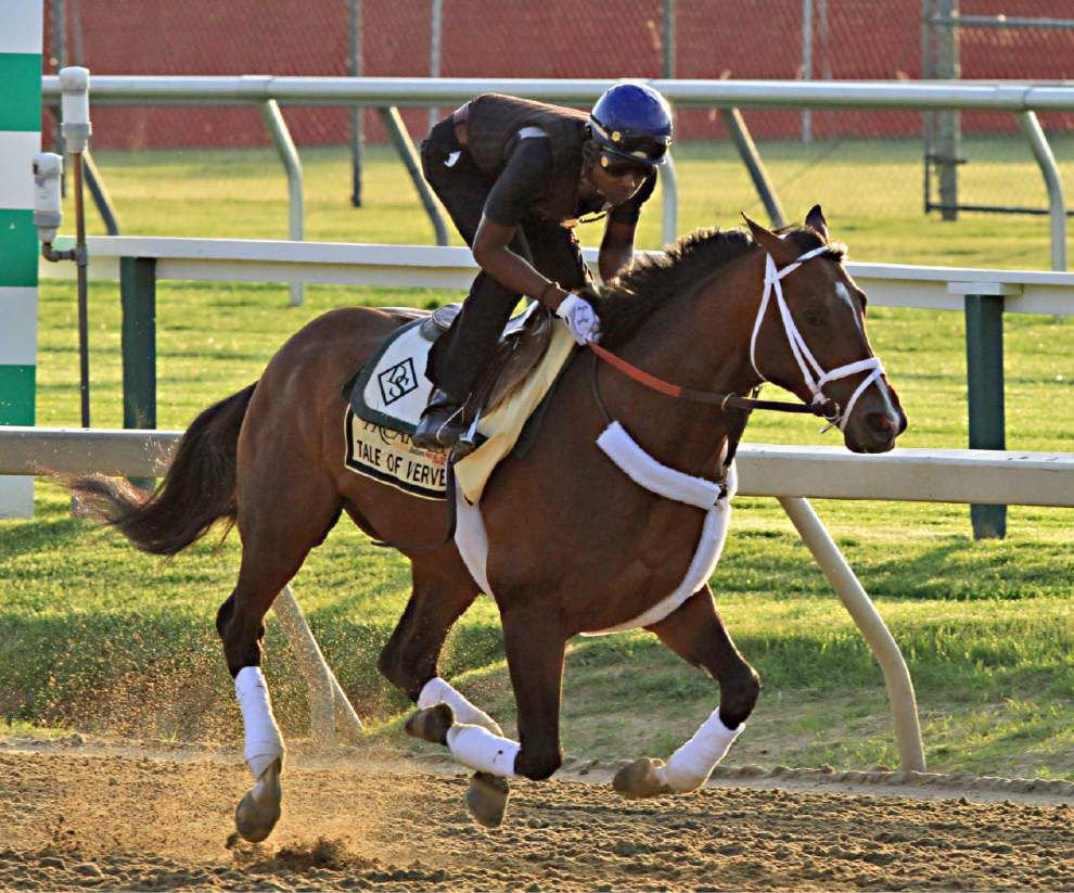 Tale of Verve finishes second at the Preakness _lowres