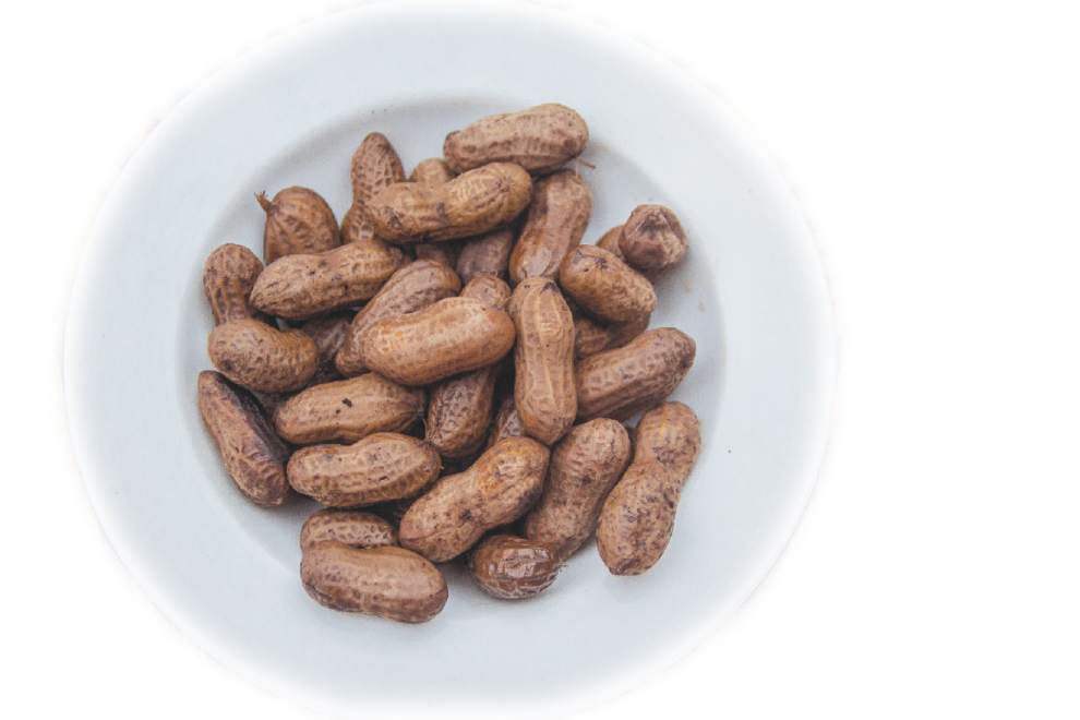 Fresh Ideas: Boiled peanuts hot, salty, addictive _lowres