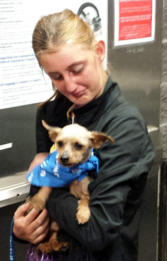 Three years after he was stolen, Sam the yorkie, found in Iowa, reunited with tearful Louisiana girl _lowres