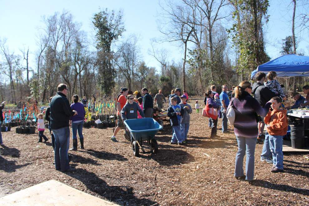 Botanic Gardens hosts family events for Arbor Day _lowres