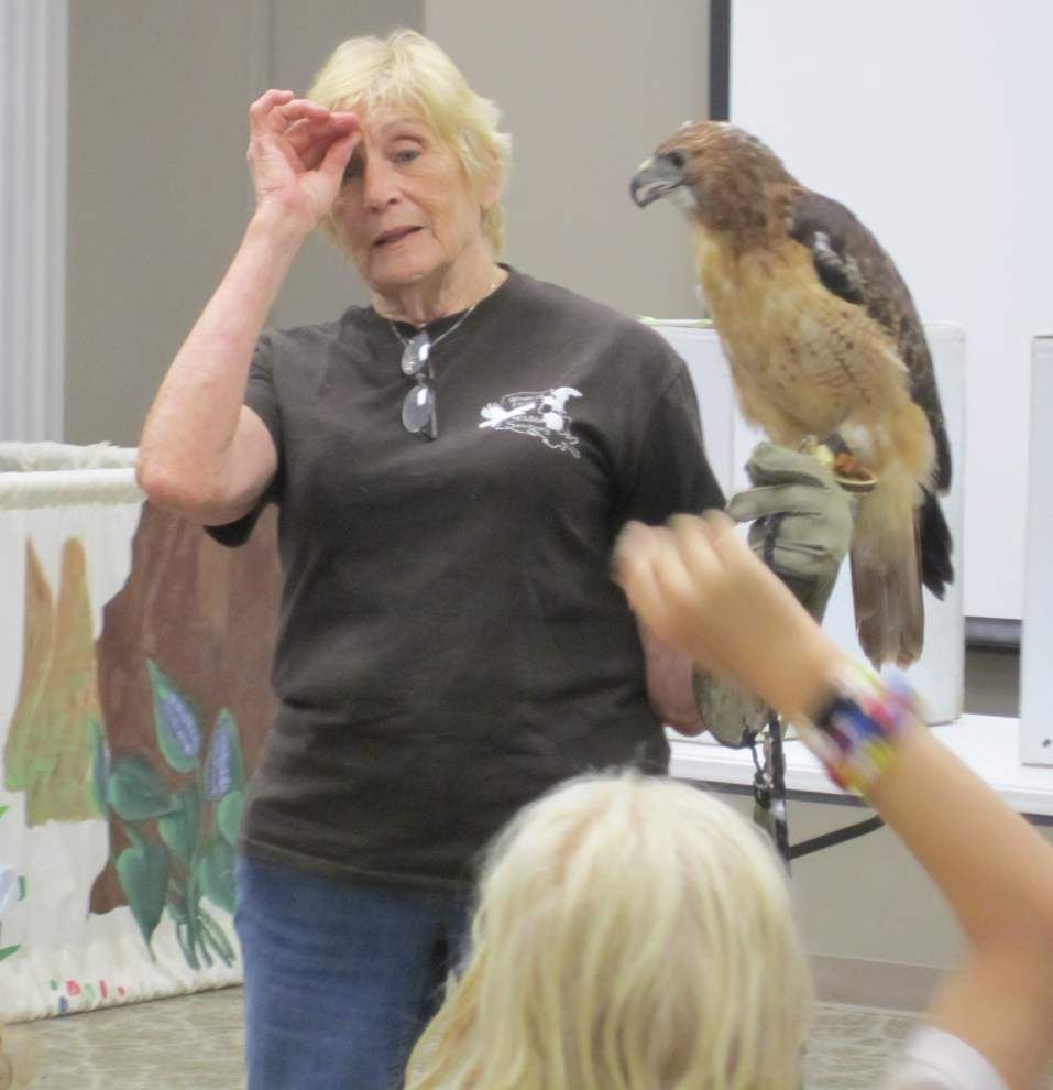 Swamp comes alive for campers at Nature Center _lowres