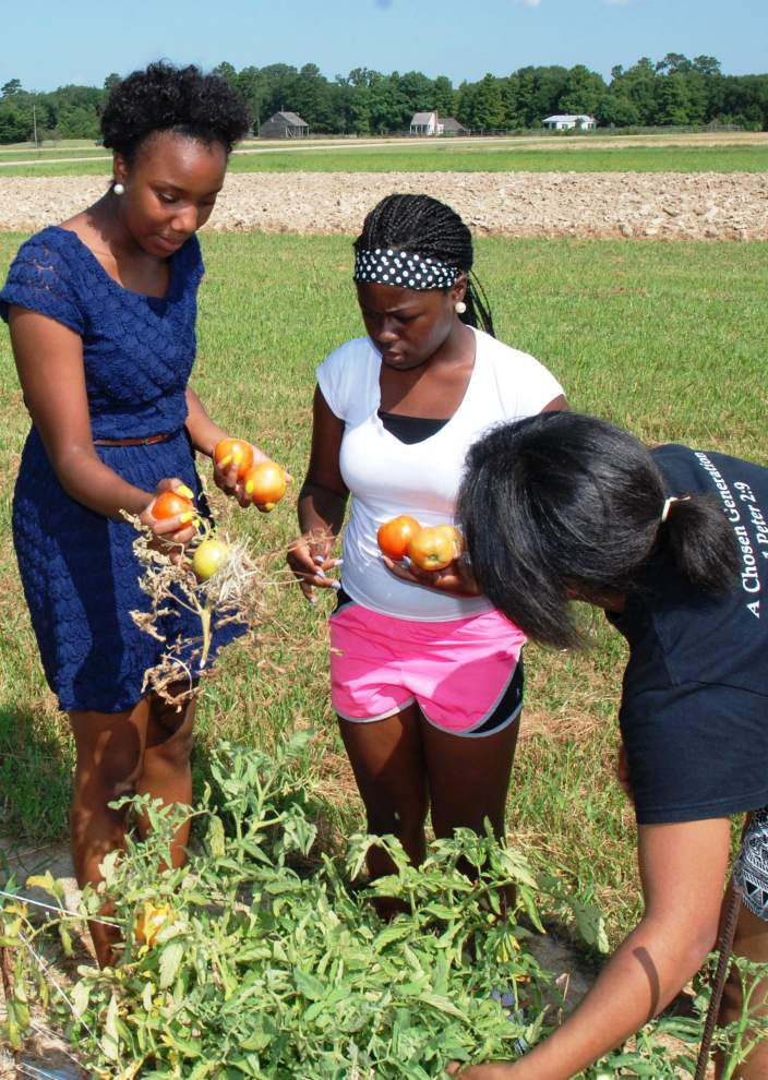 Students learn about growing, marketing produce _lowres