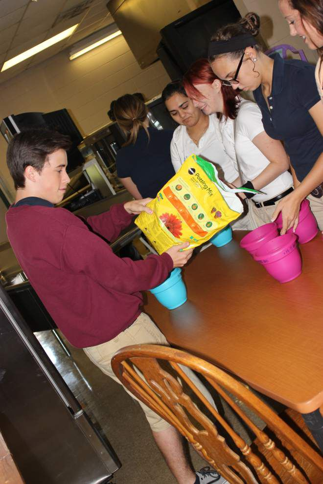 ProStart students learn about farming _lowres