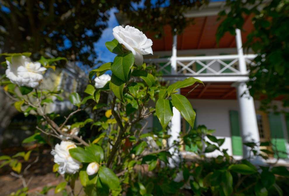 Pitot House landscaper explains the geometric beauty of parterre gardens _lowres