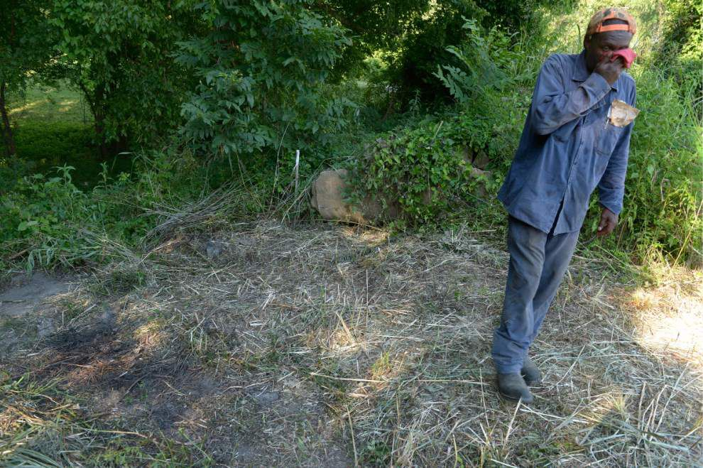 Skeletal remains found near Old Ferry Landing in W. Feliciana _lowres
