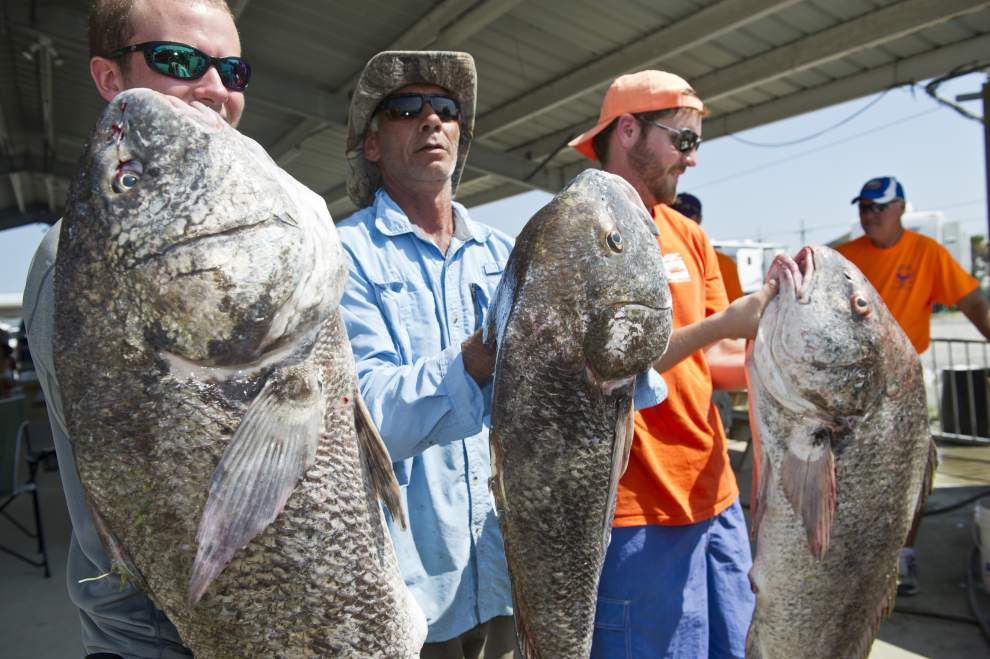 Big catches highlight second day of Grand Isle rodeo _lowres