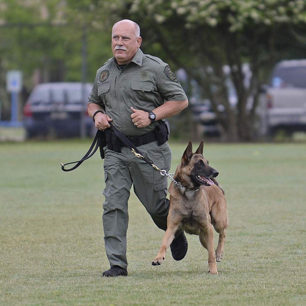 Sheriff's Office team wins Canine Association trials _lowres