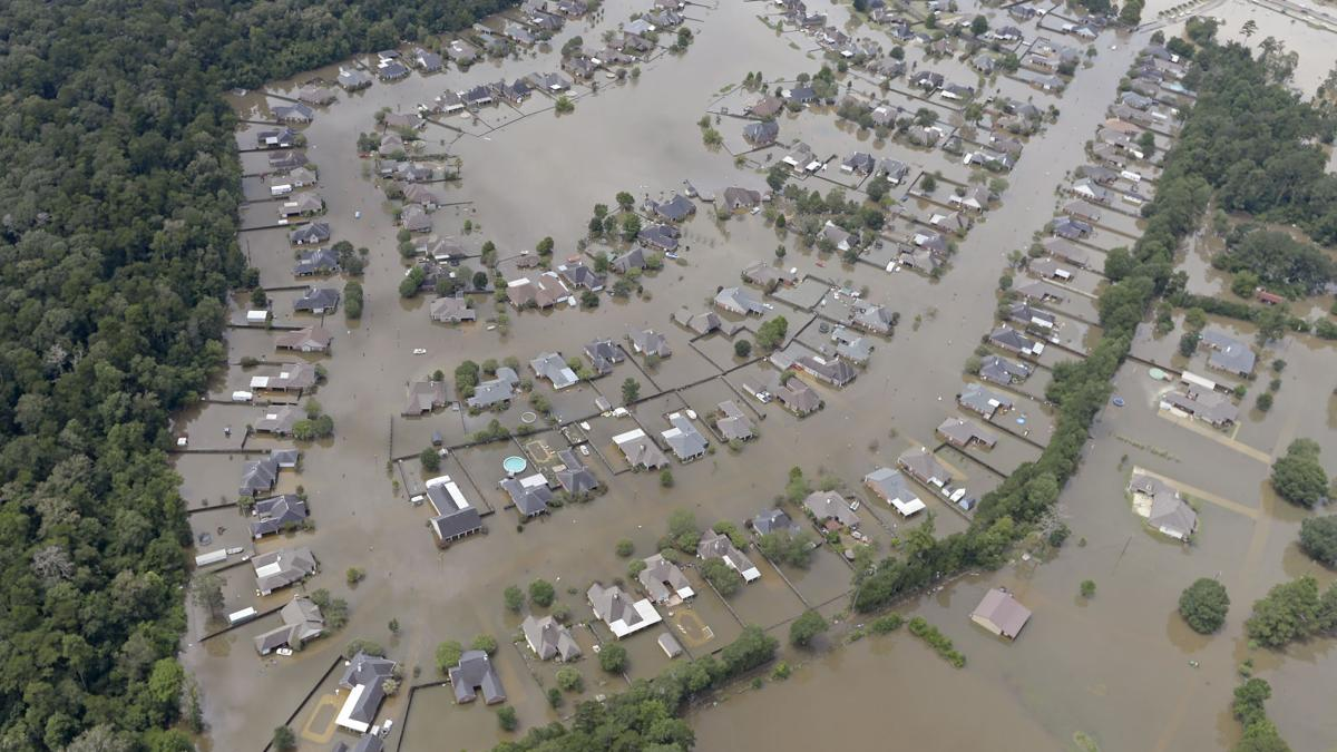 U.S. Sen. Bill Cassidy to hold flood relief town hall at 4 p.m. in Watson