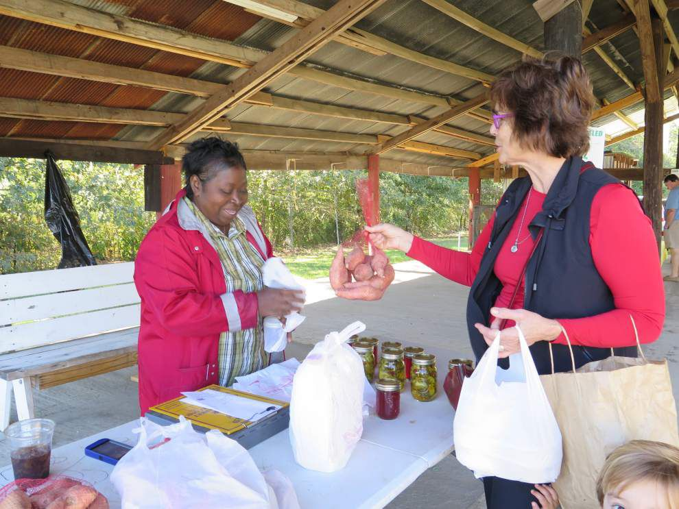 Farmers Market brings locals together _lowres