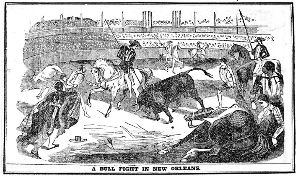 Long ago, real bullfights drew blood, wagers and protest in the Crescent City _lowres